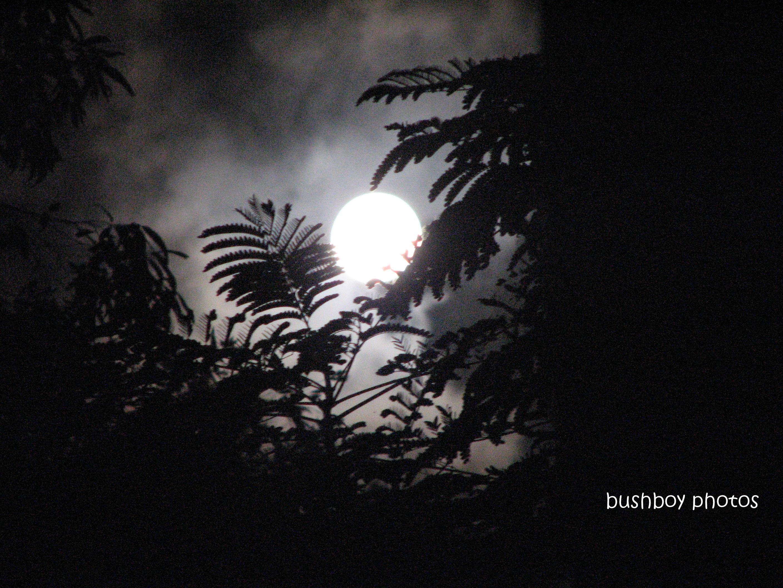 full moon_6