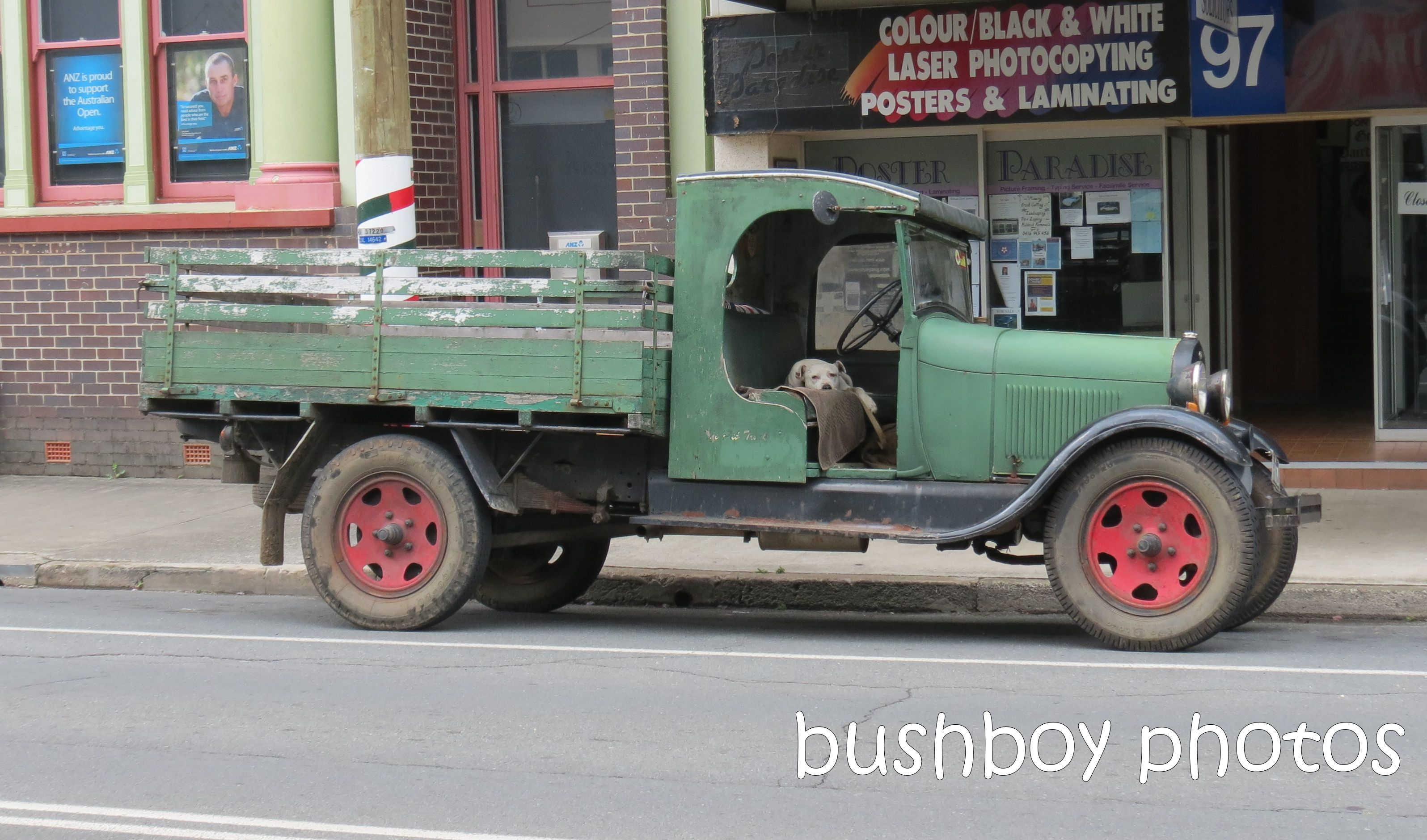 truck_dog_m-bah_named_jan 2014