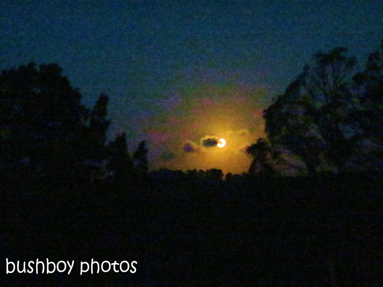 full moon_binna burra_named_feb 2014