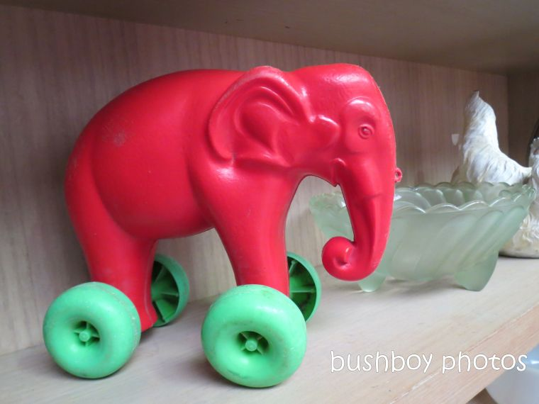 elephant toy_shop_named_murwillumbah_sept 2014