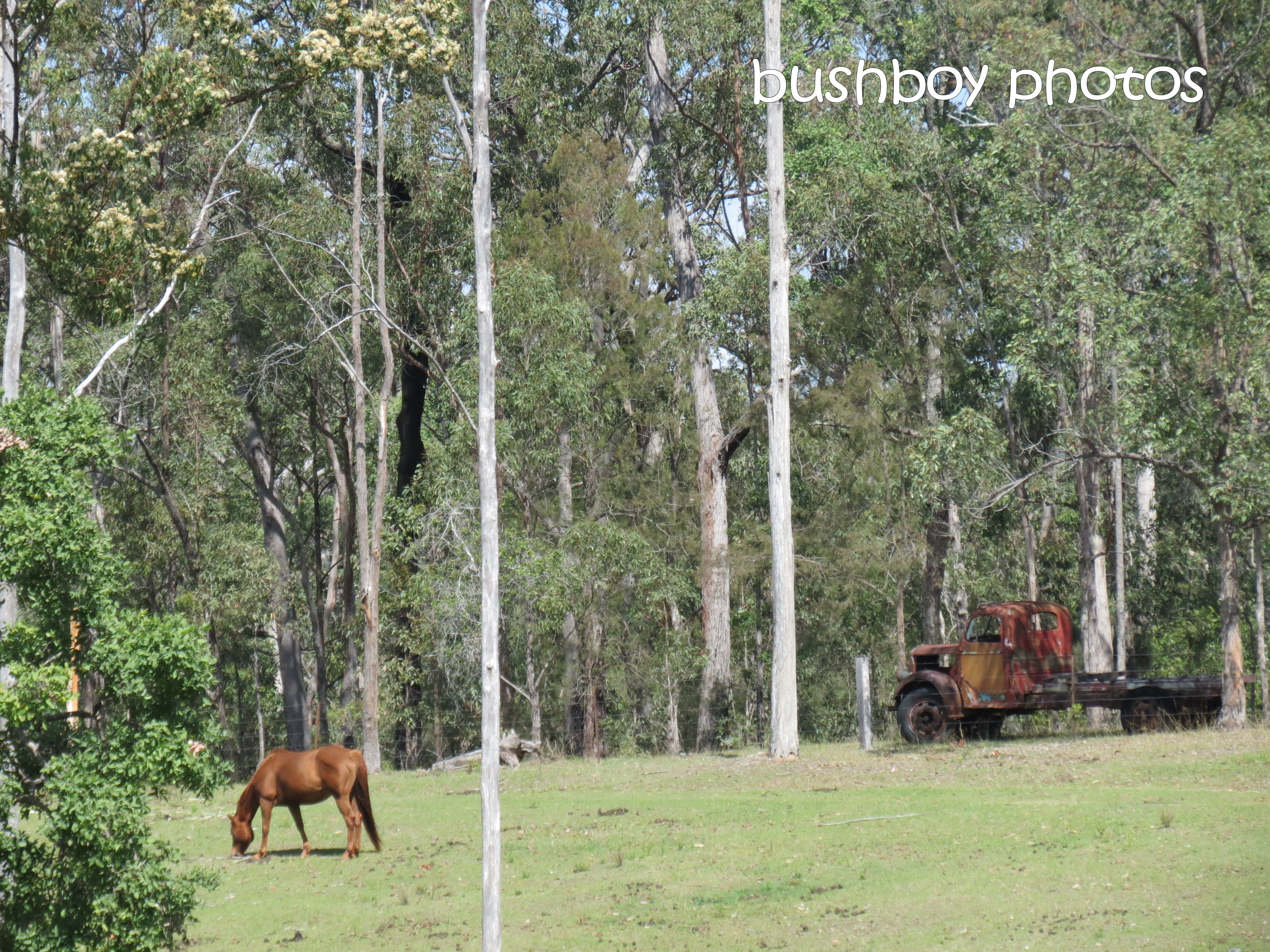 old truck_horse_duroux rd_named_sept 2014