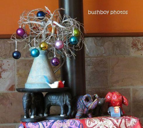 christmas tree_dec 2014