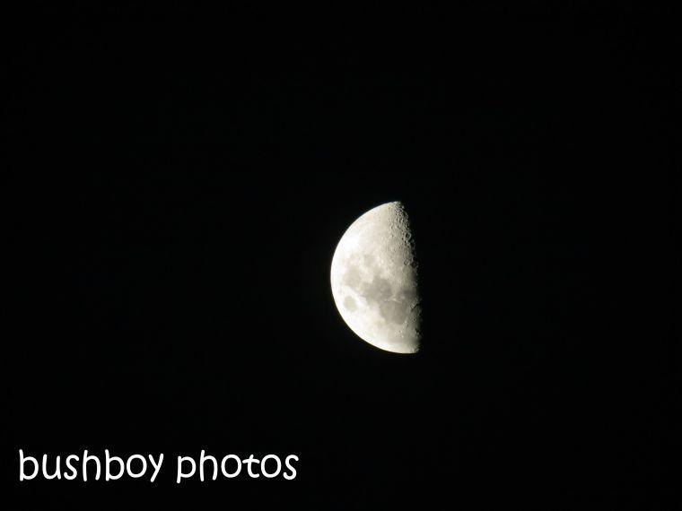 half moon_home_named_dec 2014