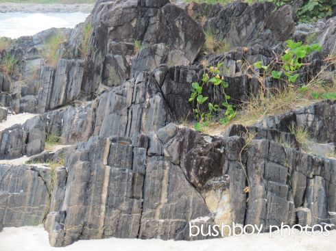 rocks_named_cabarita beach_march 2015