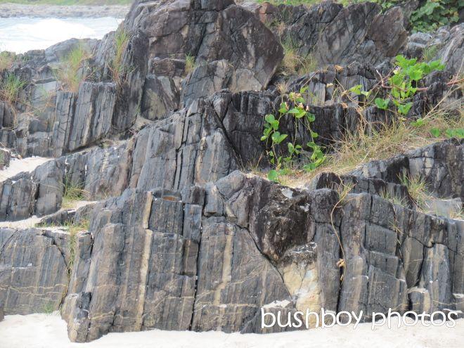 rocks_named_cabarita beach_march 2015