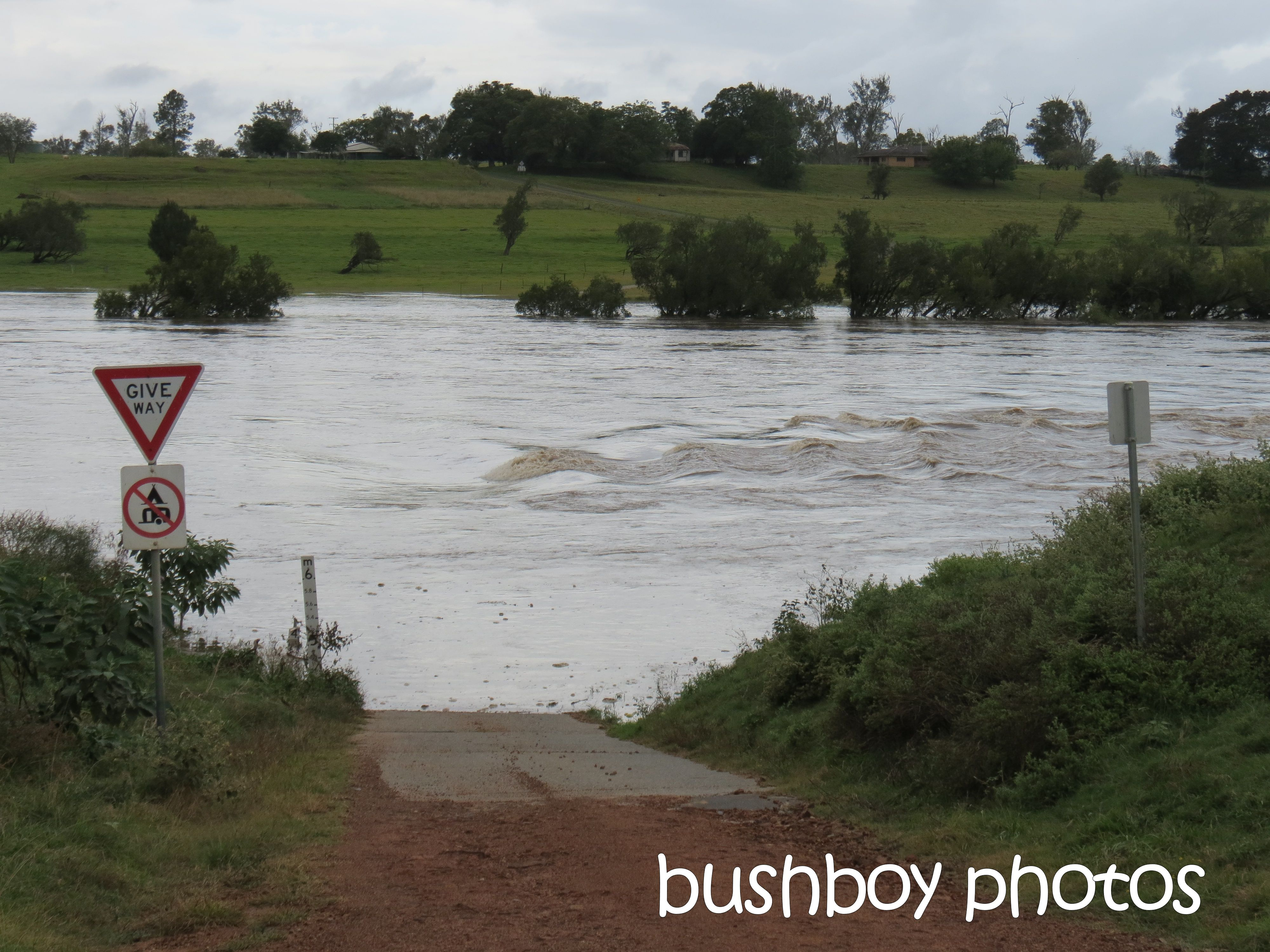 lilydale_grafton flood_named_may 2015
