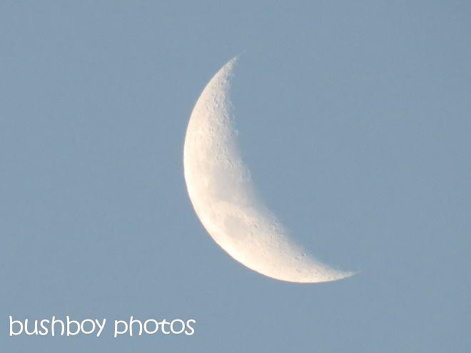 moon_named_may 2015