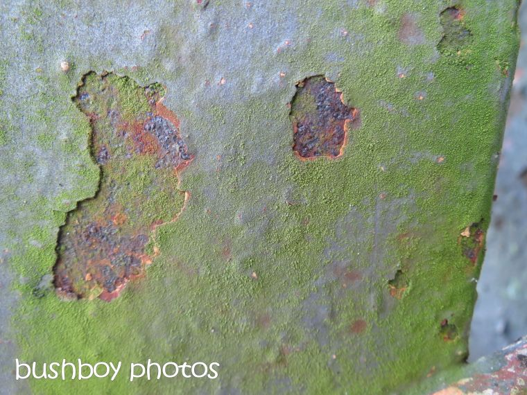 rust03_grafton bridge_named_august 2015
