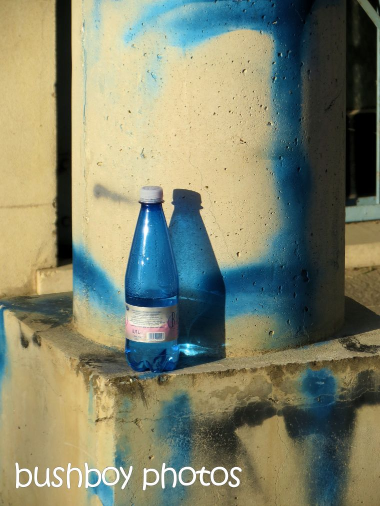 blue bottle_bologna_named_oct 2015