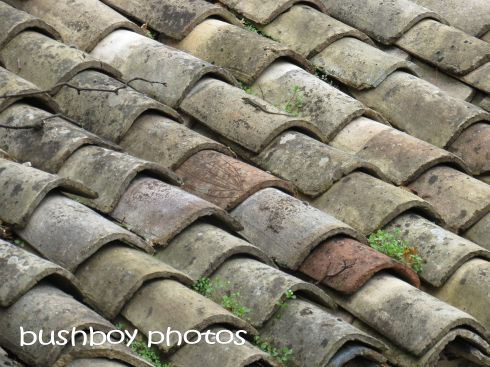 roof tiles_baume_named_oct 2015