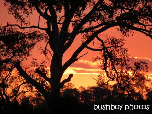 sunset_grafton_named_nov 2015