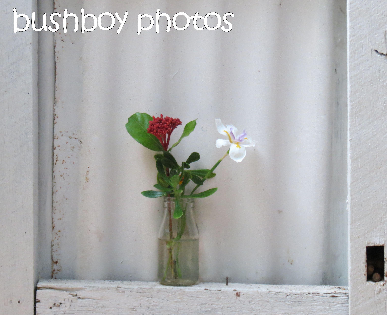 flower arrangement_binna burra_named_dec 2015