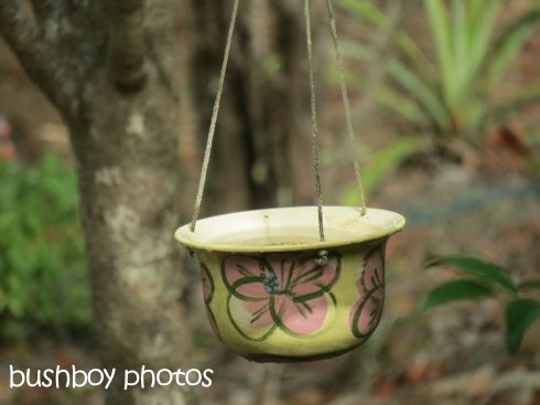 bird bath_small_named_home_march 2016