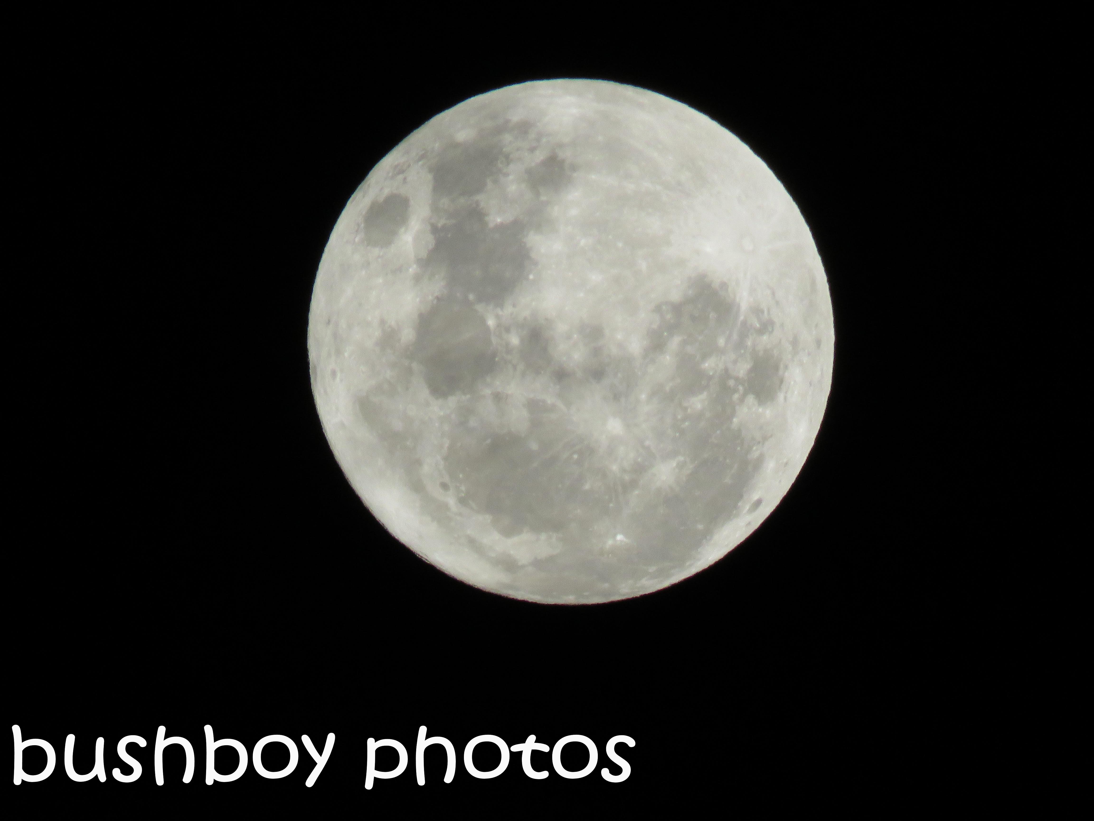 moon_named_nov-2016