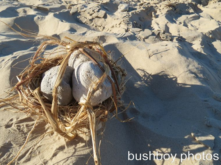 blog_beach-art_pumice-basket