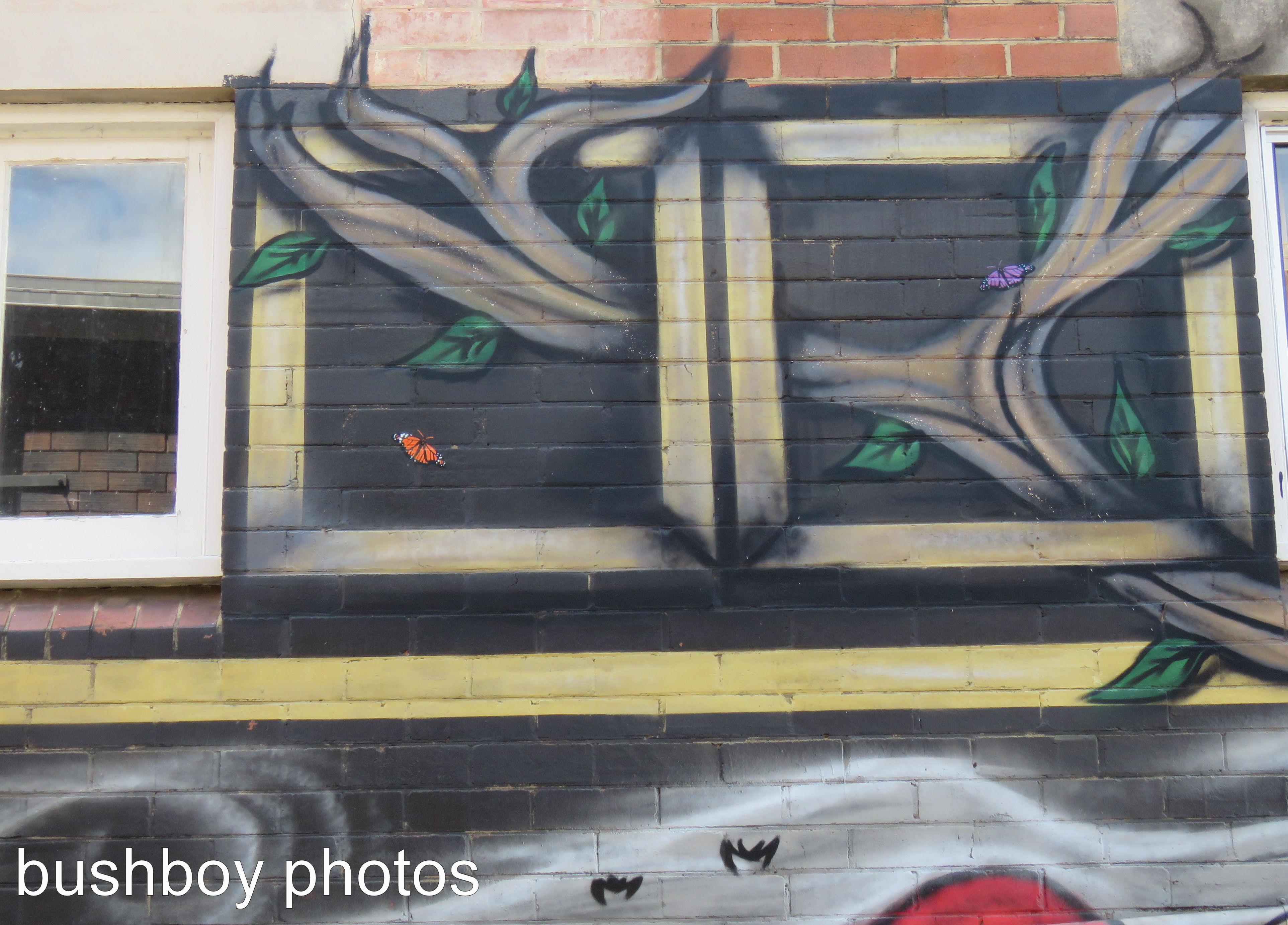graffiti_butterflies_lismore_named_march 2017