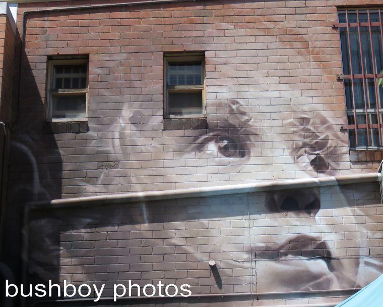 graffiti_face_lismore_named_march 2017