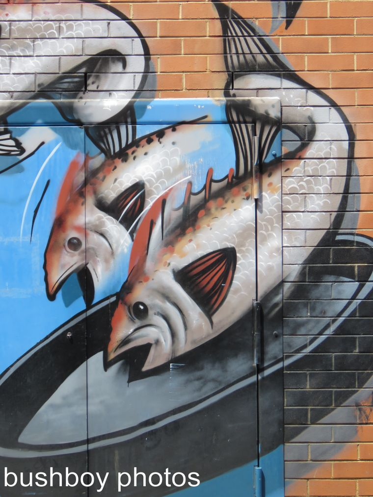graffiti_fish_lismore_named_march 2017