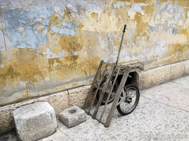 the cart_verona