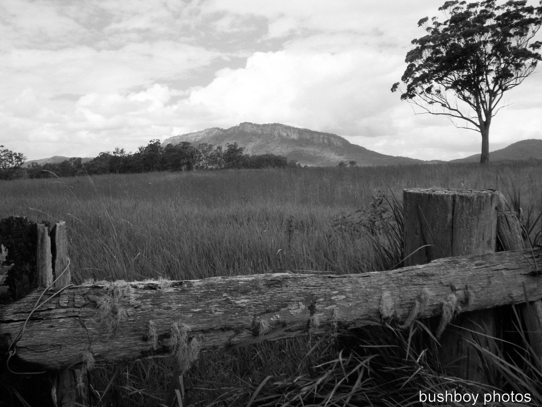 170408_bandw letters_l_landscape