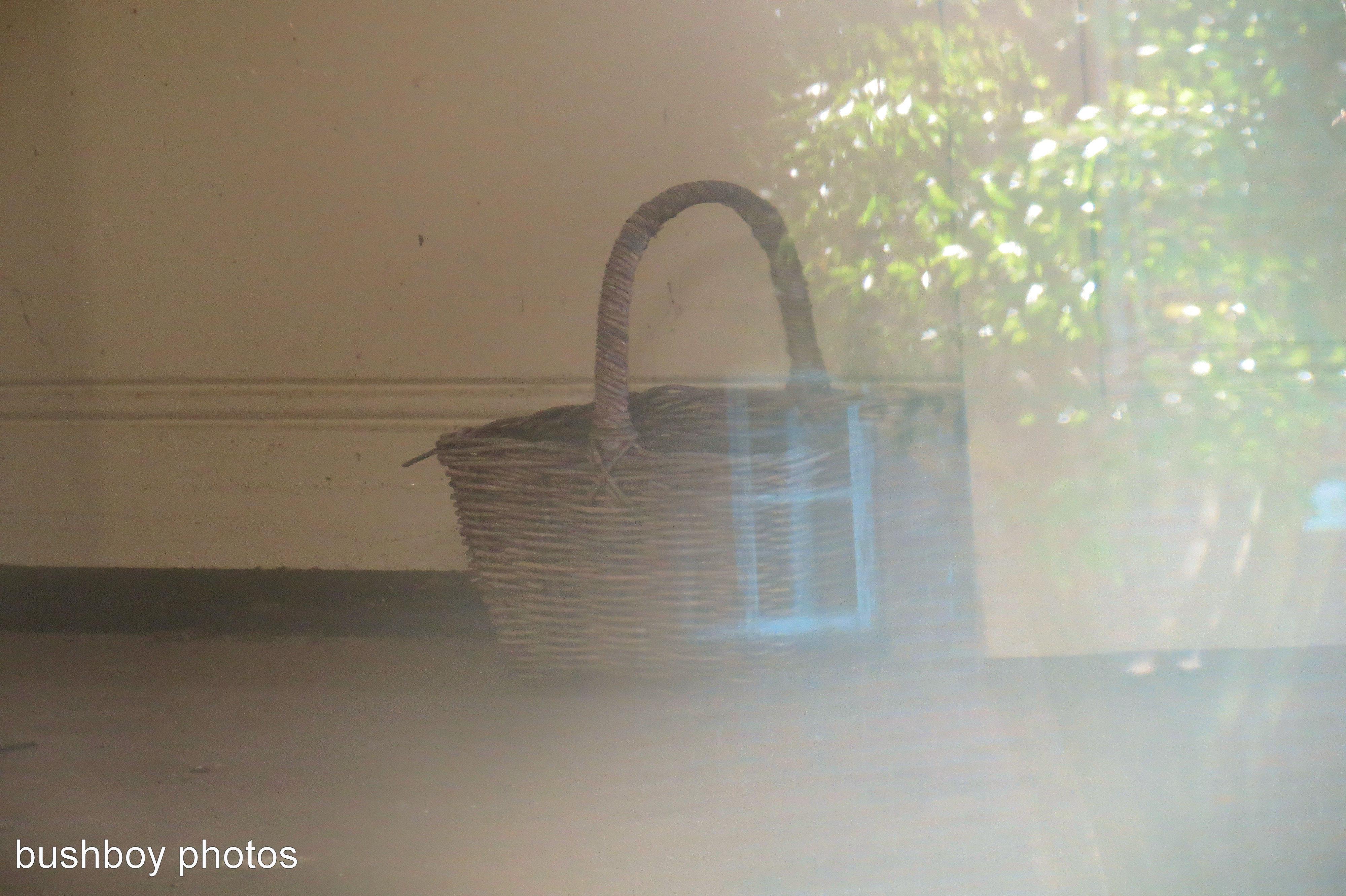 170425_mystery_basket