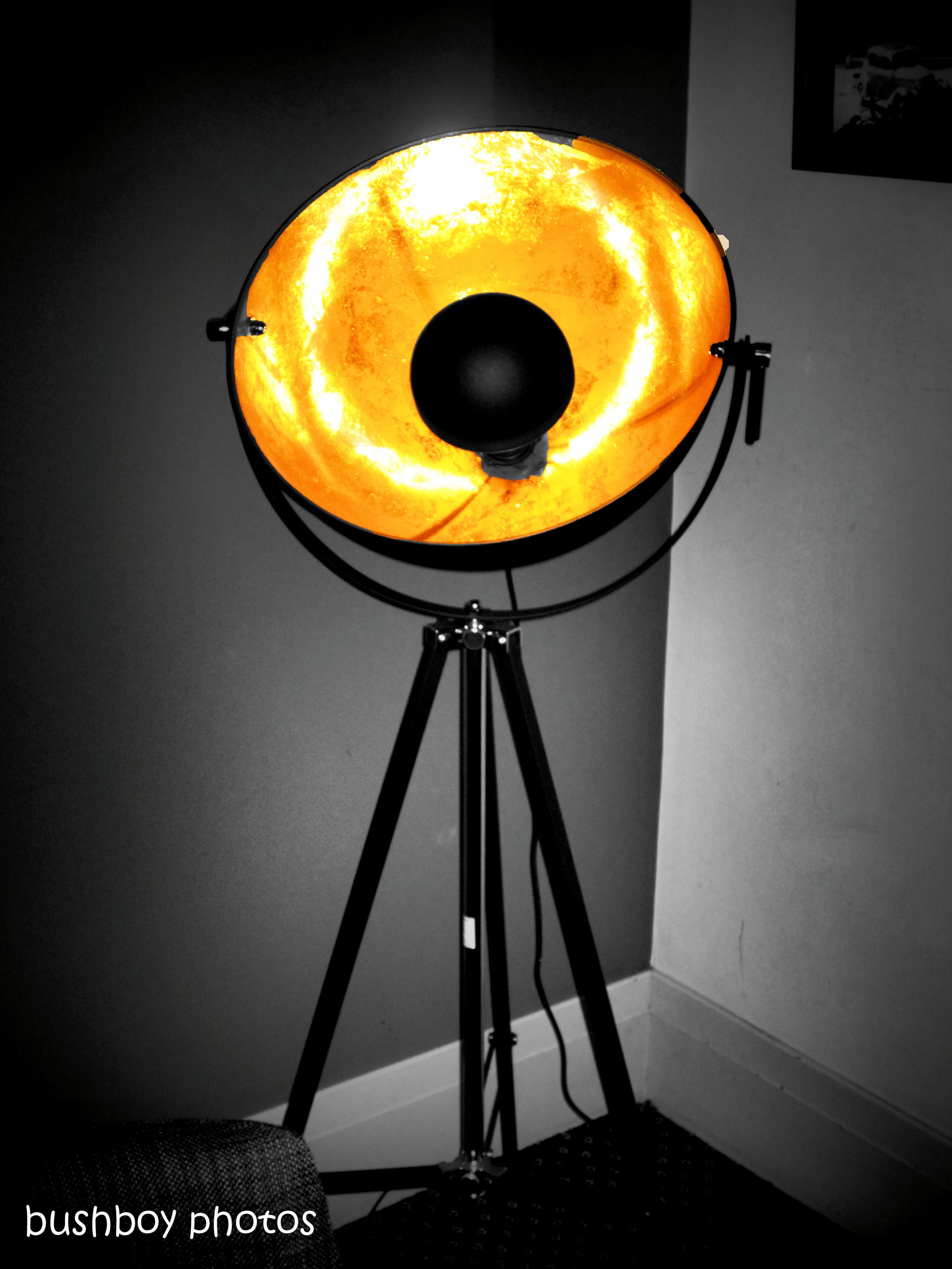 170616_blog challenge_bandw_lights_tripod light_sc