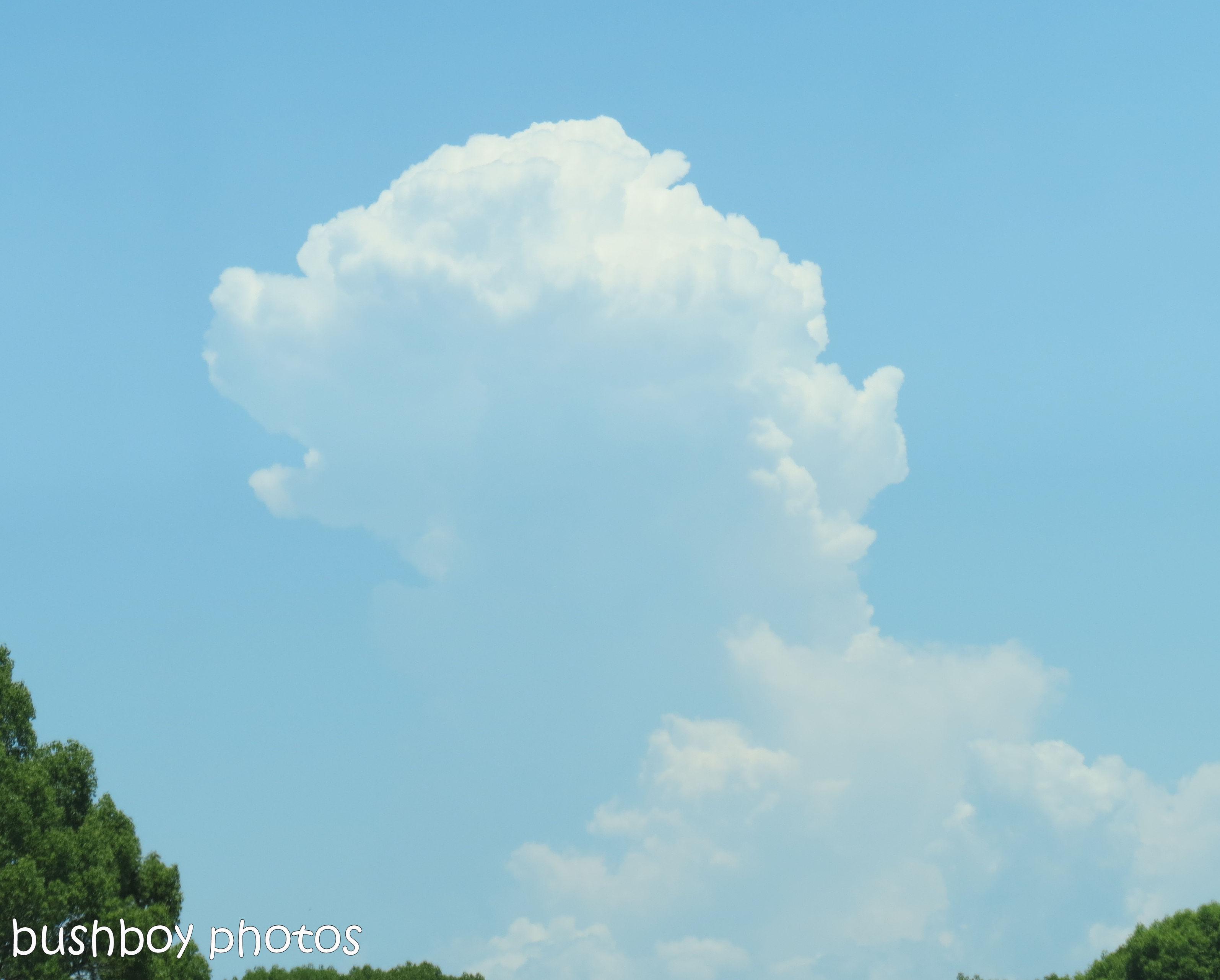 170712_blog challenge_clouds_bear