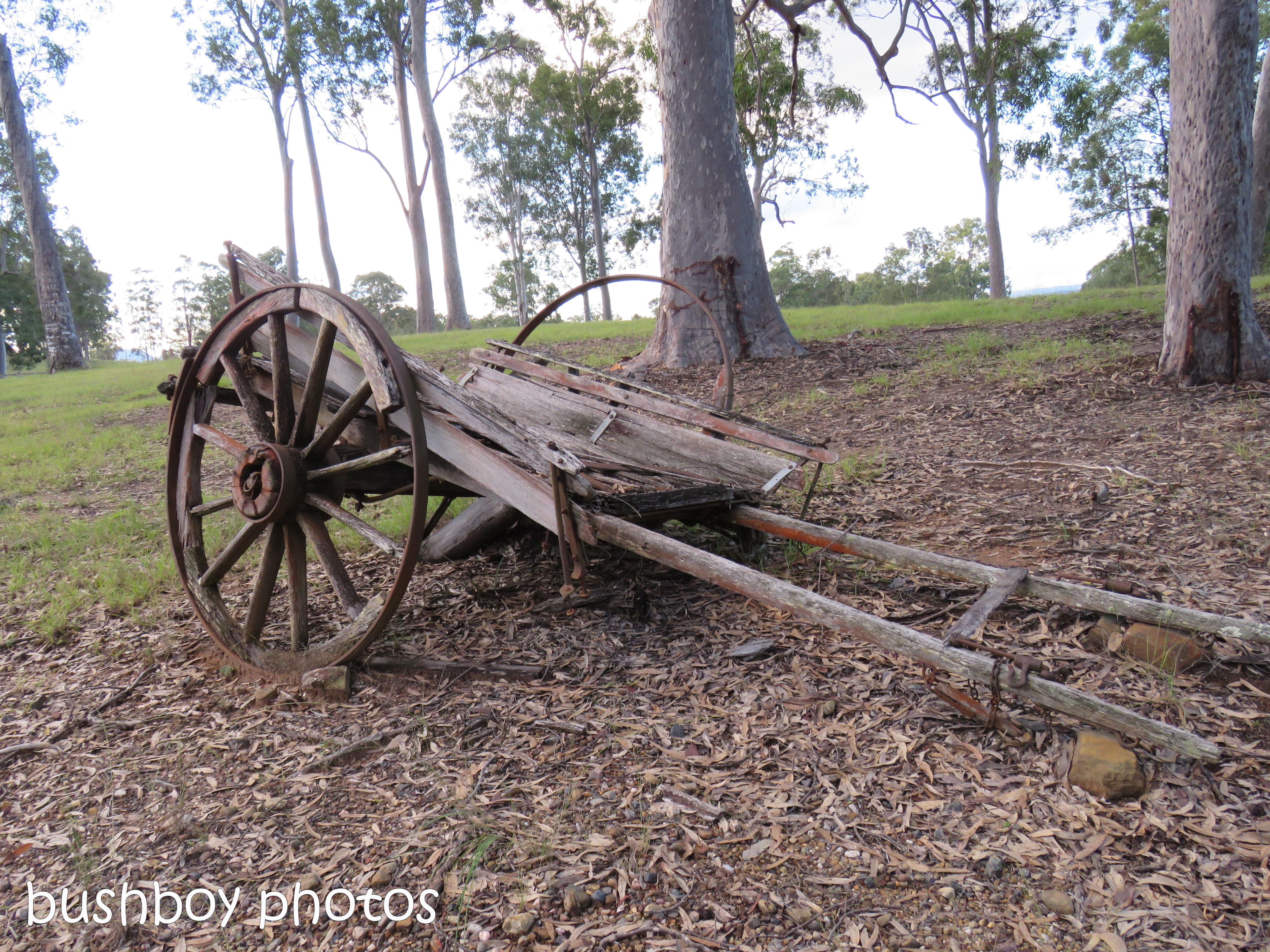 old cart_named_jackadgery_june 2017