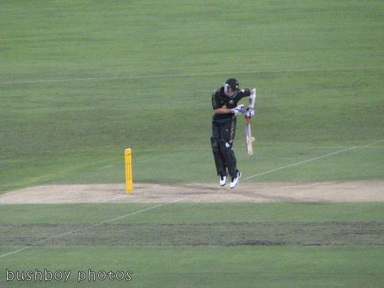 170913_blog cvhallenge_sport_brett lee bat