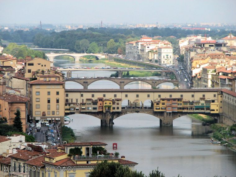 171116_blog challenge_bridges_bridges of florence