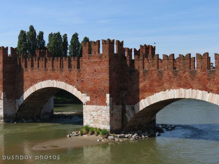 171116_blog challenge_bridges_castel vecchio_verona