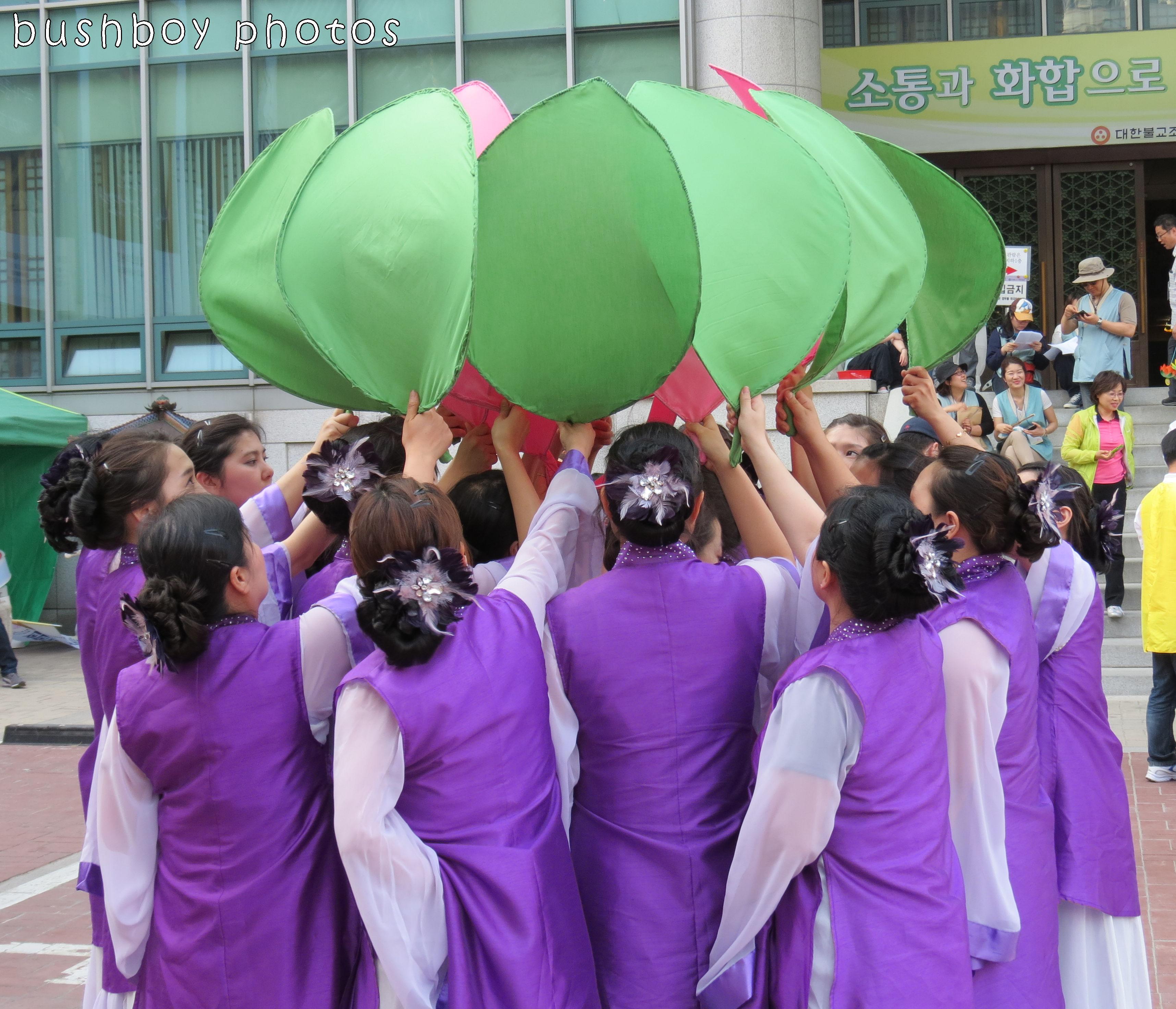 171117_blog challenge_dancing_sth korea_lotus01