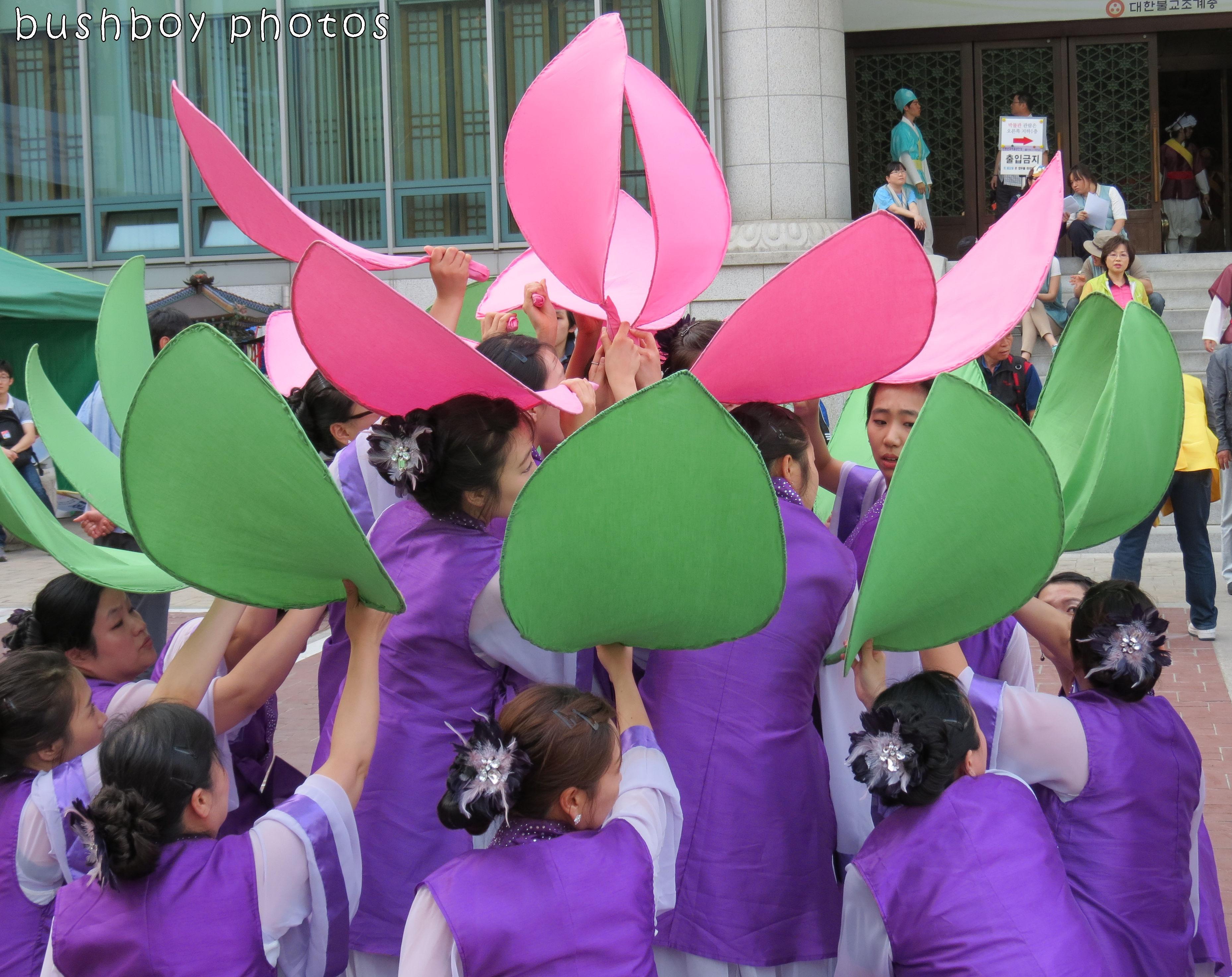 171117_blog challenge_dancing_sth korea_lotus02