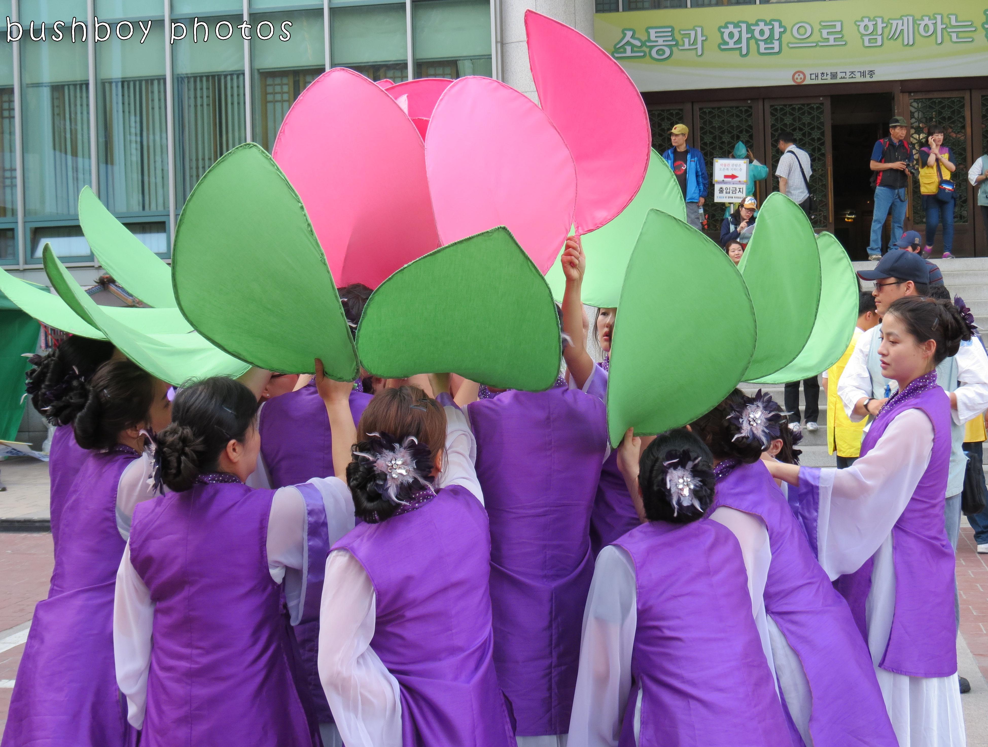 171117_blog challenge_dancing_sth korea_lotus03