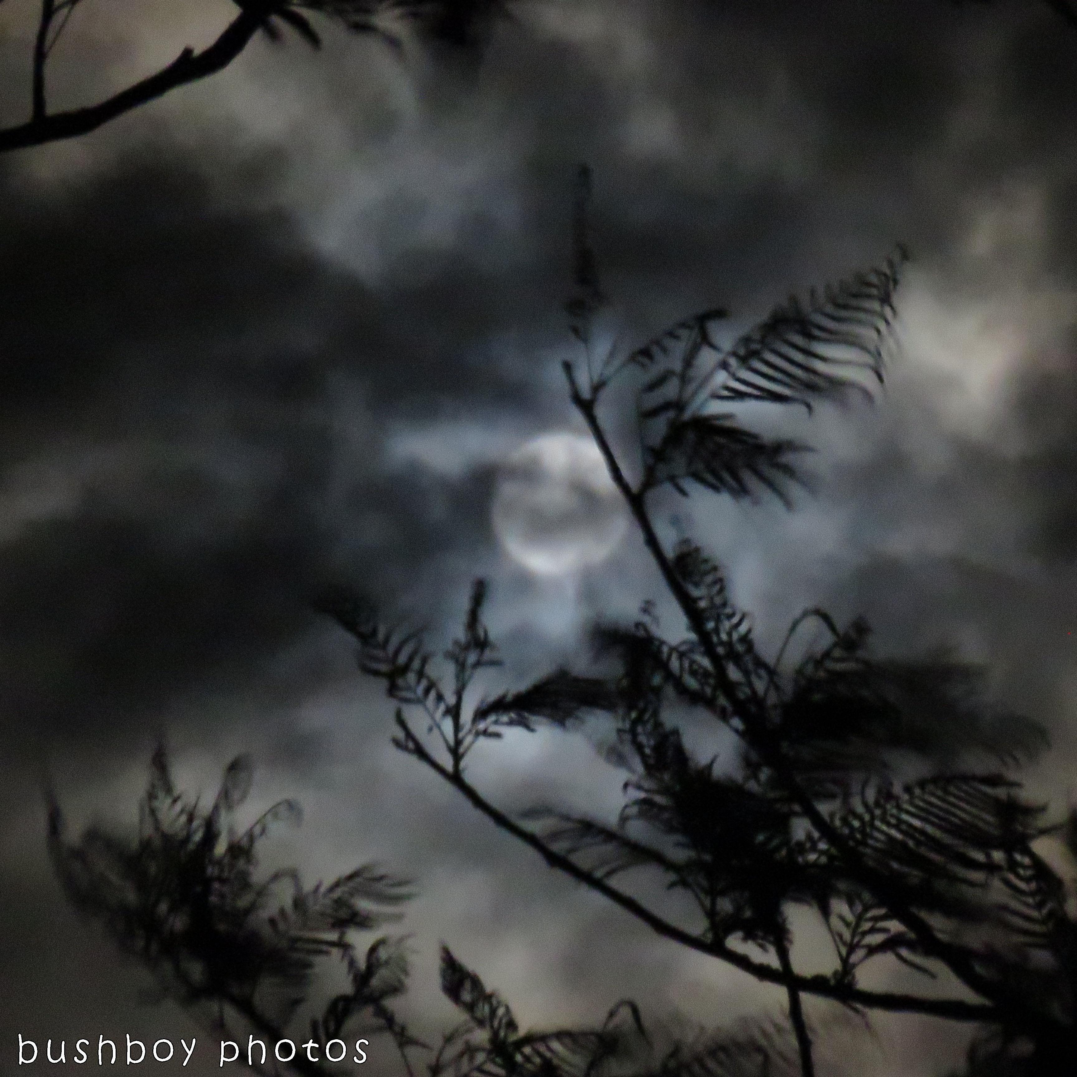 171205_blog challenge_squaresky_full moon