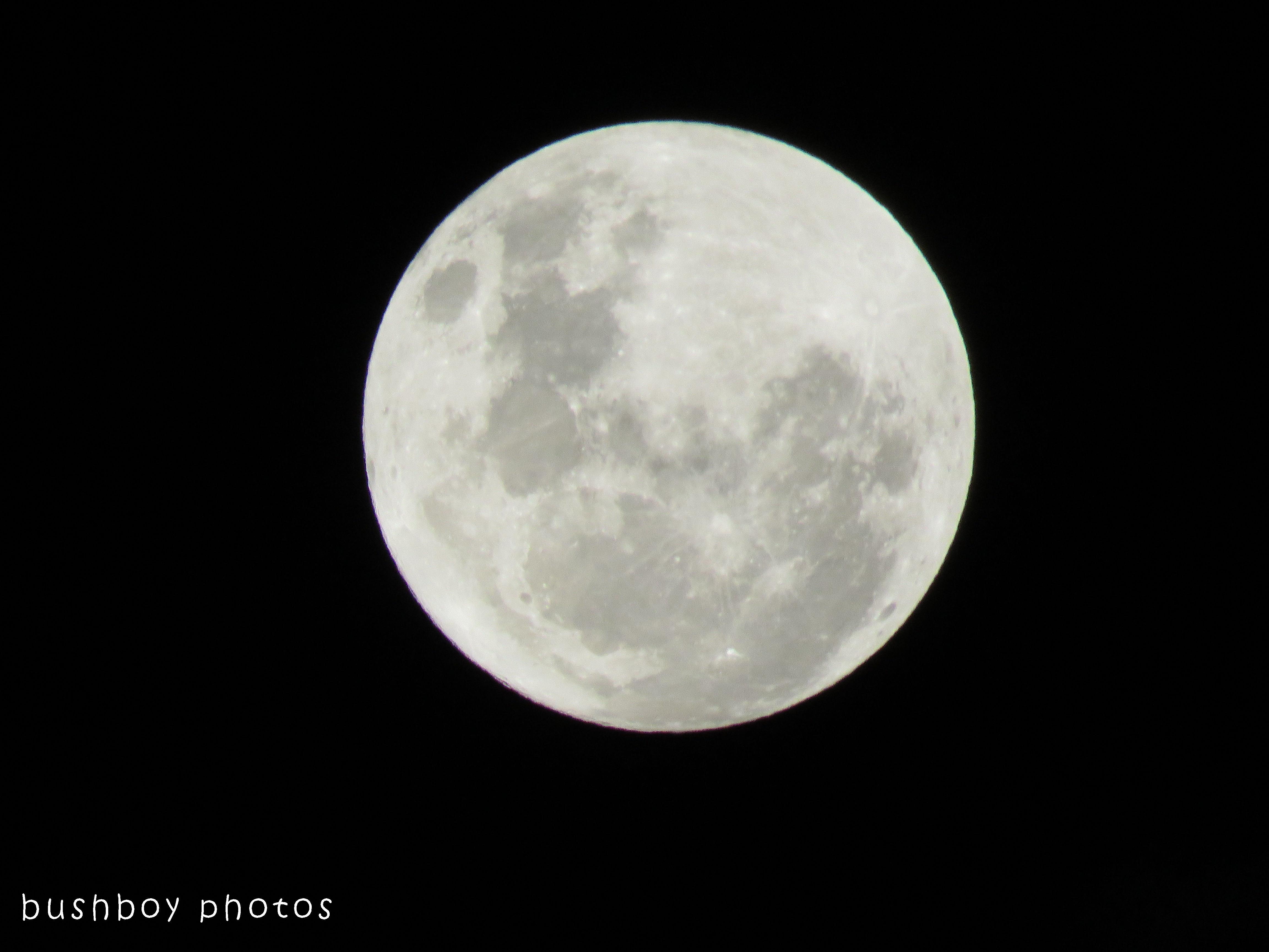 171206_blog challenge_thursdaysspecial_sequence_moon05