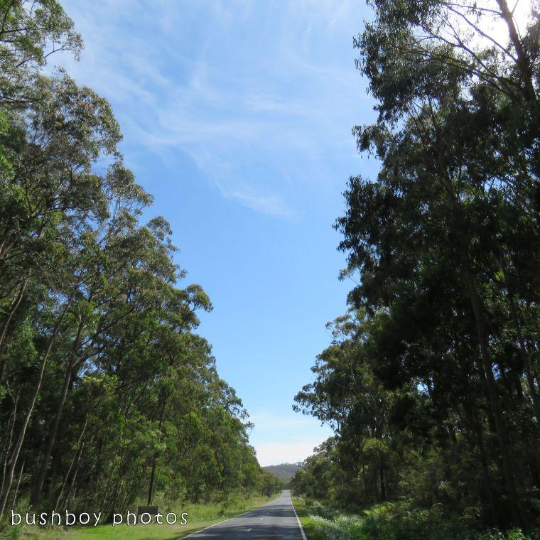 171220_blog challenge_the highway
