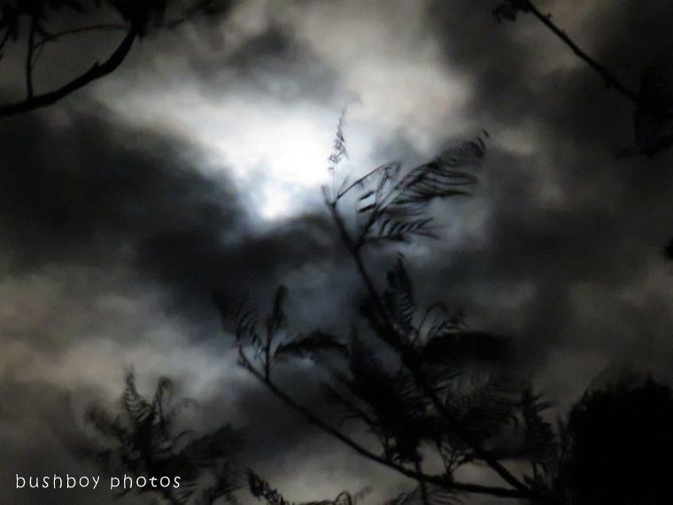 171221_blog challenge_darkness and light_moon02