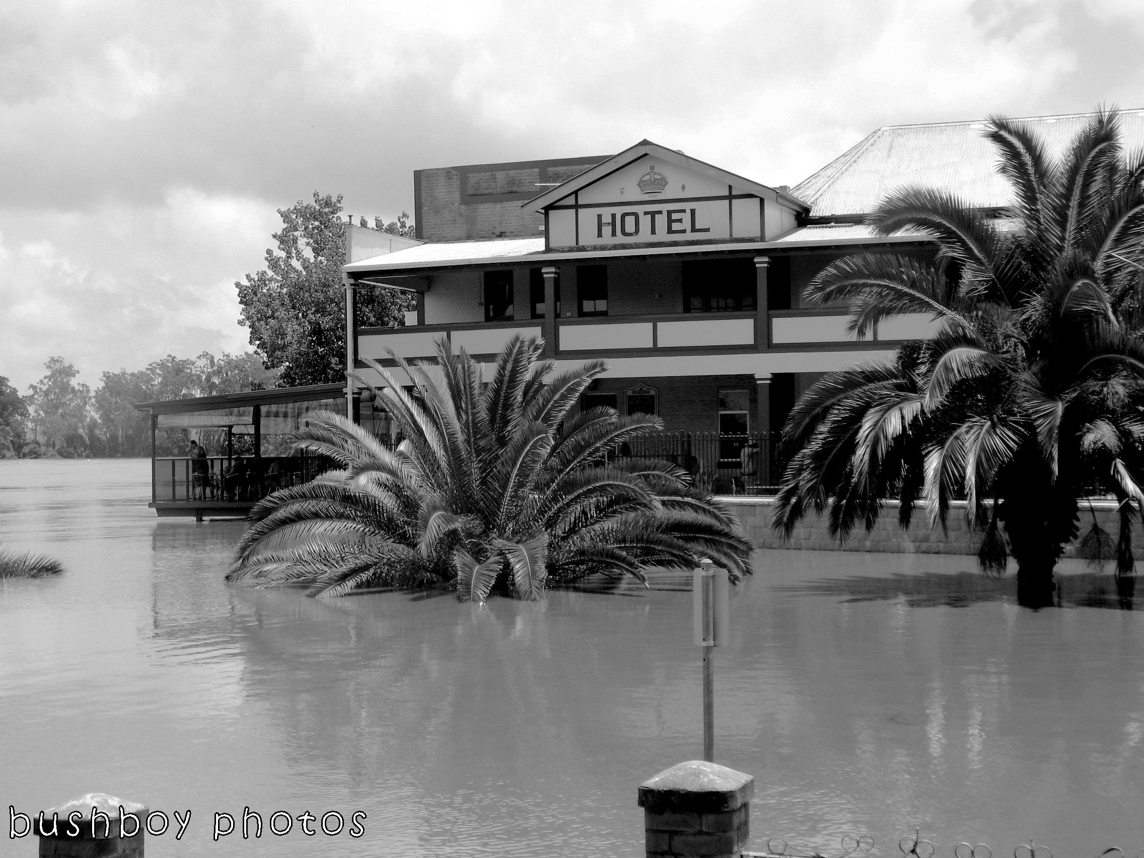 171230_blog challenge_blackandwhite_water_grafton flood
