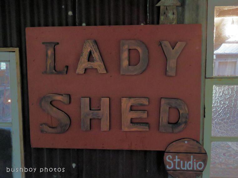 171230_blog challenge_sign_lady shed