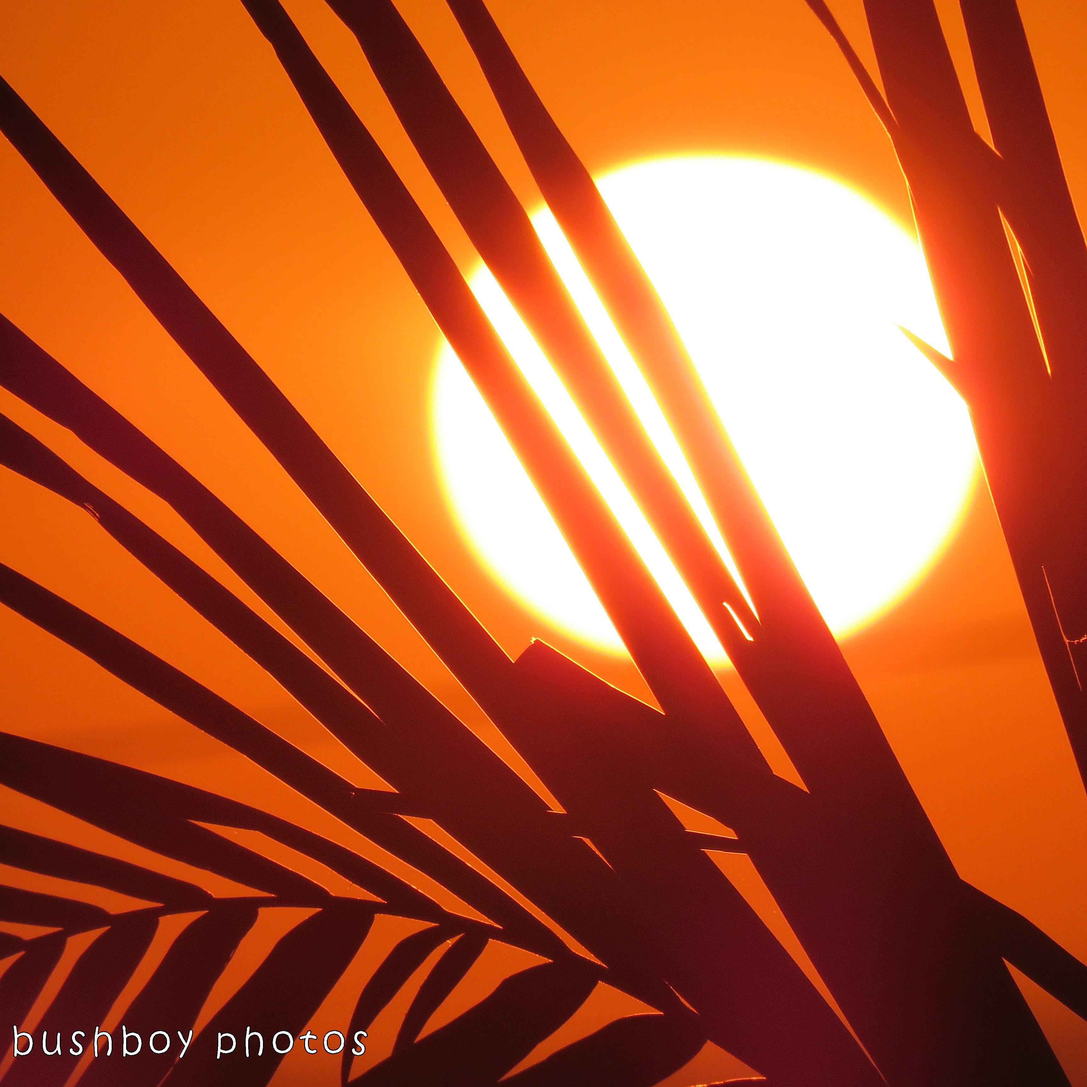 1712_standby010_blog challenge_squaresky_sunset