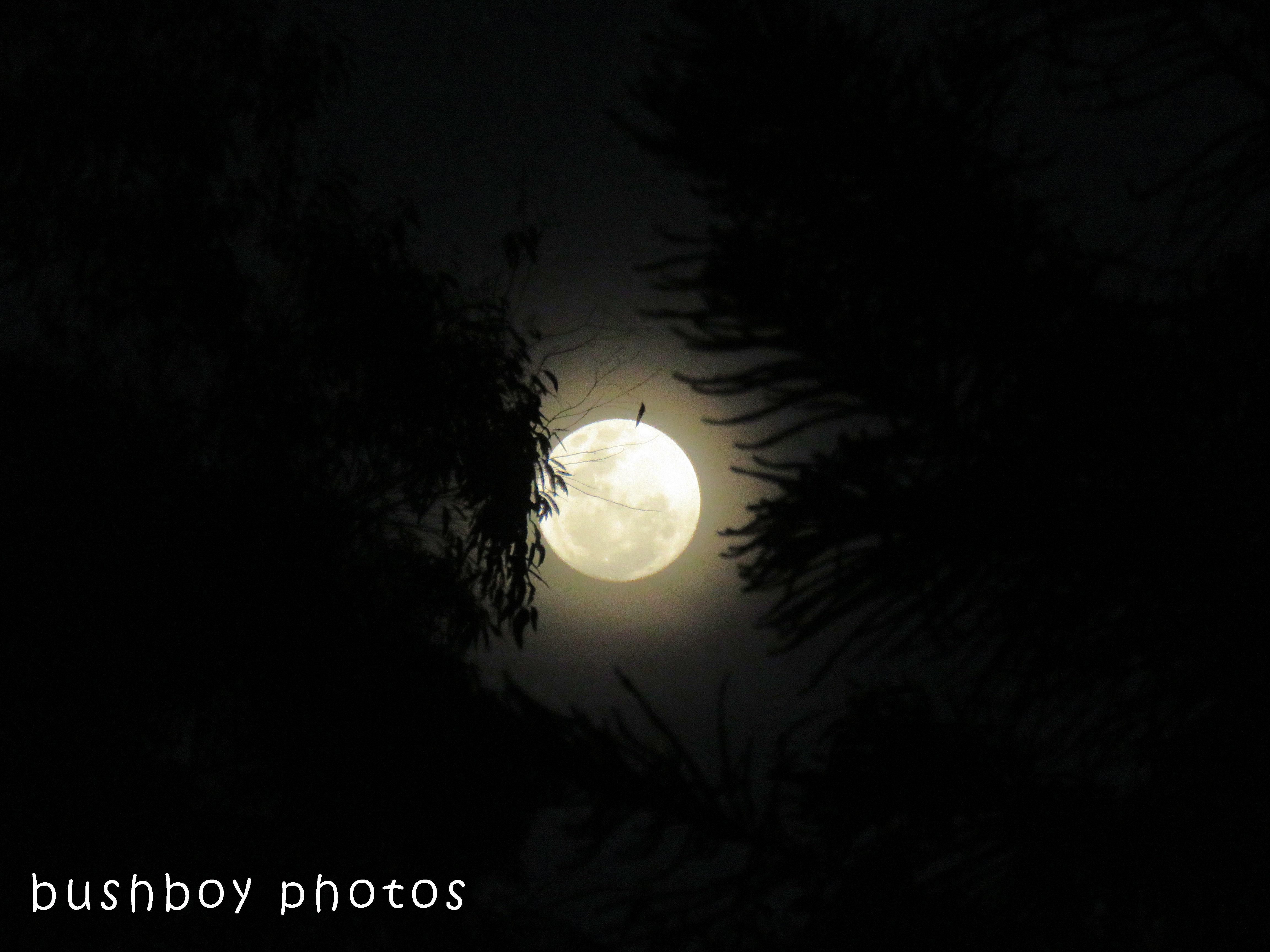full moon01_named_home_oct 2017