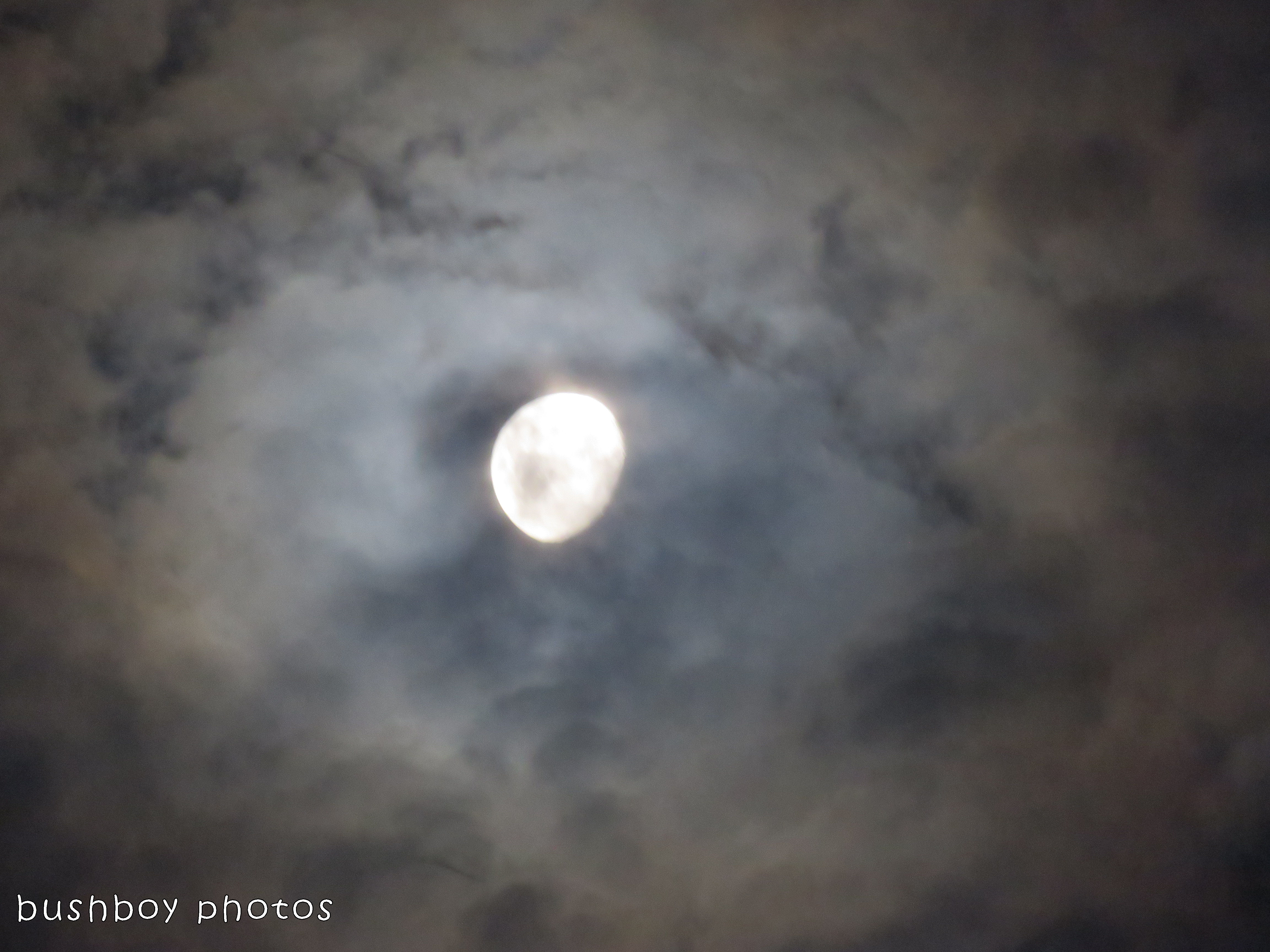 180130_look up_moon clouds