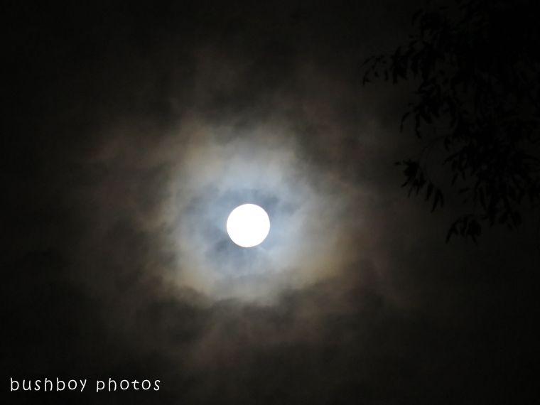 moon02_named_binna burra_dec 2017 - Copy