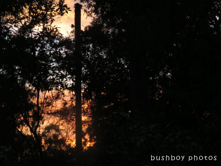 sunrise_named_home_dec 2017