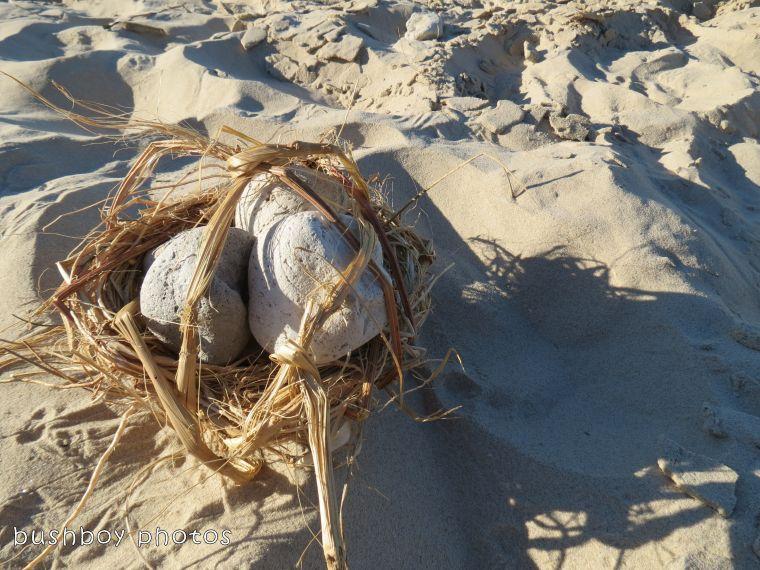 180220_odd ball_beach basket