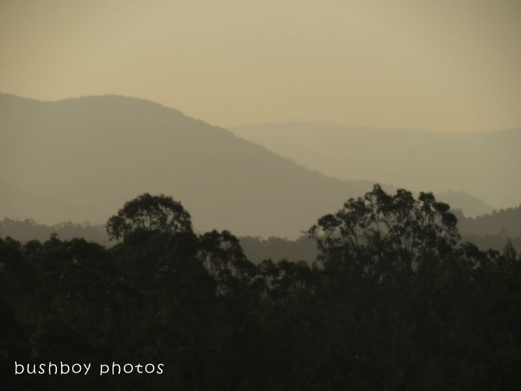 180228_hills_yellow