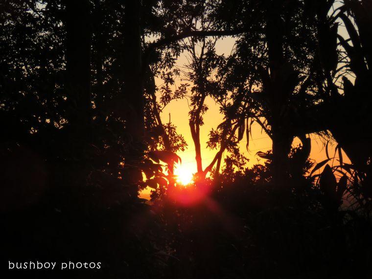 sunset_early_named_binna burra_jan 2018