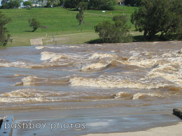 lilydale bridge_floodwater