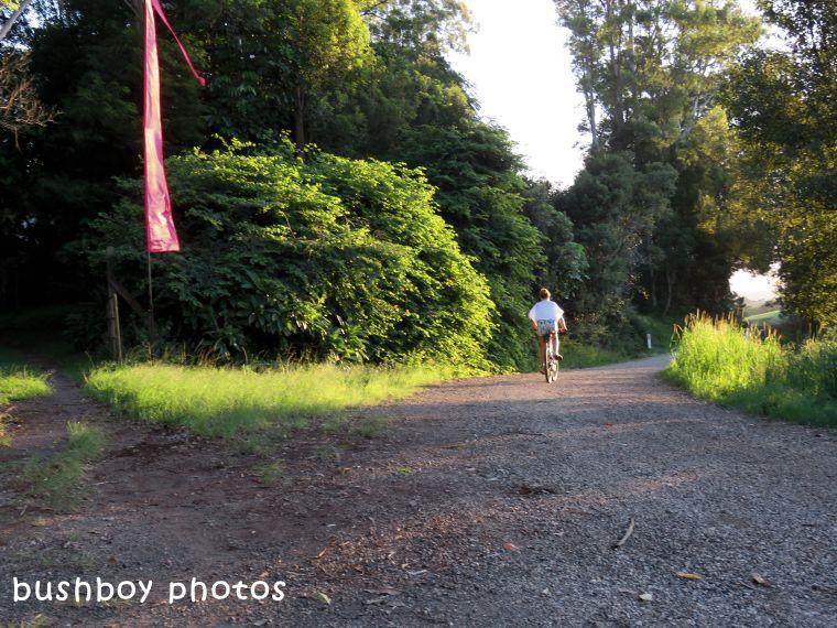180318_which way_drive_road_bike